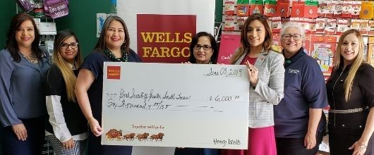 Girl Scouts of Greater South Texas awarded $6,000 from Wells